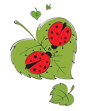 Lovers ladybugs Stock Vector - 15589481