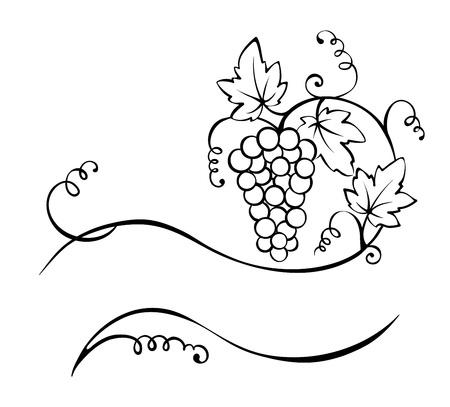 crop: Title - the vine Illustration