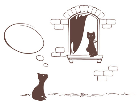 assignation: Cats love