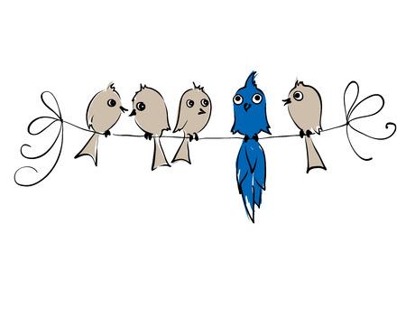 everyone: Not like everyone  Birds