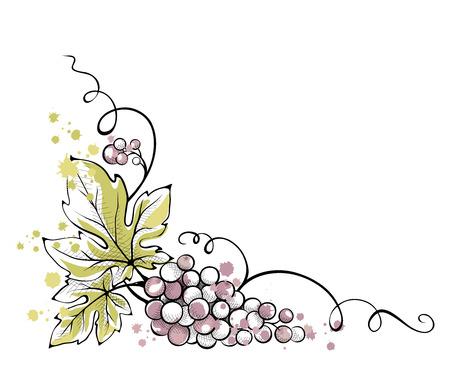Watercolor illustration, vector -- bunch of grapes Vectores