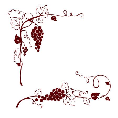 Vintage design elements -- vine