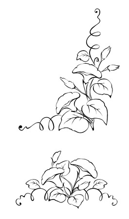 liana: Vector pattern of flowers with curls Illustration