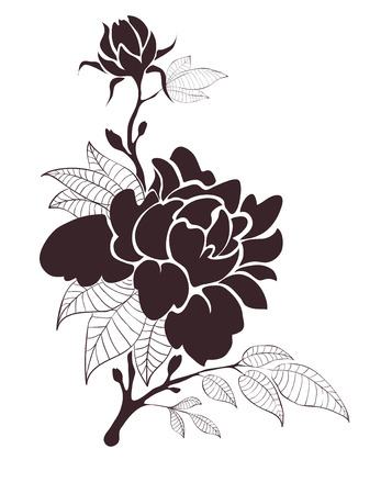beauty birthday: Vector illustration -- peonies