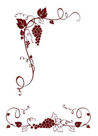 wine grape: Vintage design elements -- vine