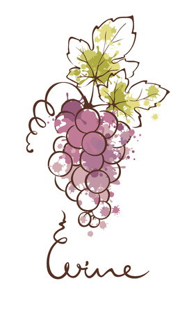 Illustration, design element - grapes. Splash watercolor. Illustration