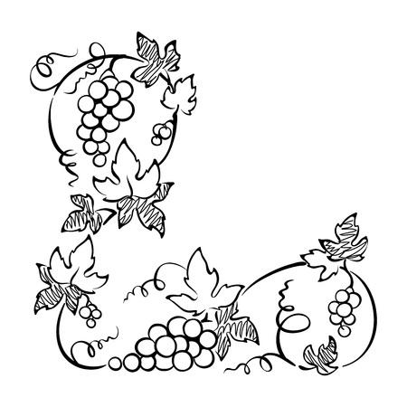 vine: Design element, corner -- vine. Graphic illustration.
