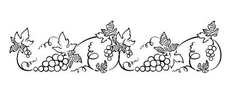 grape crop: Design element, border -- vine. Graphic illustration.
