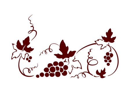 grapes on vine: Design element, border -- vine. Graphic illustration.