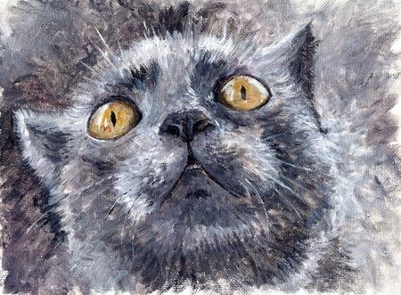 cat eye: Painting -- gray cat
