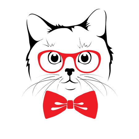 funny cats: illustration -- Stylish cat hipster