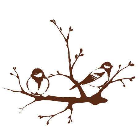 A birds on a branch, spring
