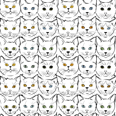 feline: Collection feline muzzles kittens of different breeds, seamless pattern Illustration
