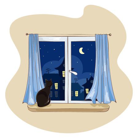 finestra: Gatto in casa sulla finestra in attesa per l'host