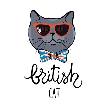 funky: British catVector illustration of a funny cat in sunglasses and bow tie