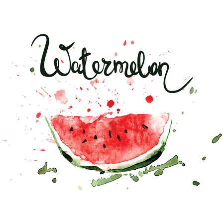 Slice of watermelonWatercolor illustration with splashes and blots
