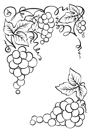 Frame of bunches of grapes/Vintage vector decoration for wine labels or wine list Vector Illustration