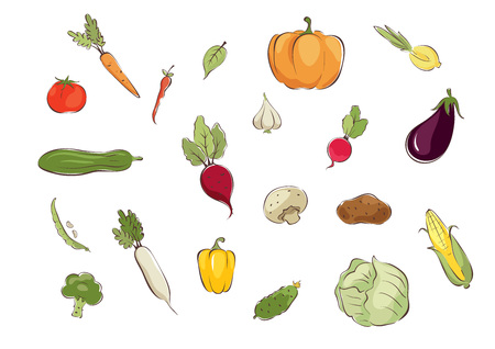 potatoes: Collection pictures -- vegetables  Set graphic vector illustrations with different vegetables