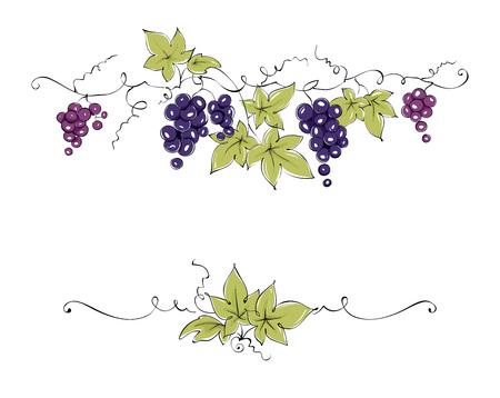 Elementos de diseño - vid / ilustración vectorial color, uvas rojo oscuro - dibujo, bosquejo Foto de archivo - 77527150