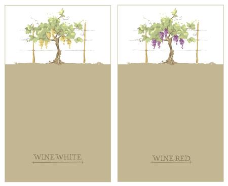 Label voor rode en witte wijn - set  Vector illustratie, floral ontwerpelement, aquarel