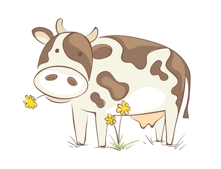 Cow with dandelion  Funny vector illustration, cheerful cow chews a flower Ilustração