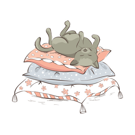 Sleeping cat  Vector illustration, gray cat sleeping on a pile of pillows Illustration