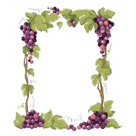 Frame from grapes for vine label. Purple grapes, Vector illustration in watercolor style.