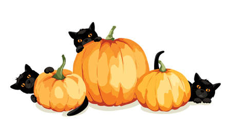 Black kittens play with pumpkins. Funny vector illustration, Halloween card.