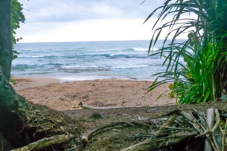 Costa Rica Beach Palm Trees Caibbean Tourism Tourist Paradise Destination Puerto Viejo Caribbean Turquoise Water Beatiful Beach Stock Photo