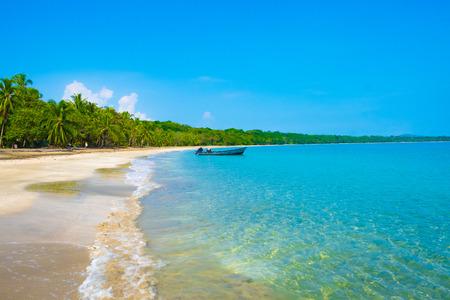 Costa Rica Beach Palm Trees Caibbean Tourism Tourist Paradise Destination Puerto Viejo Caribbean Turquoise Water Beatiful Beach Reklamní fotografie