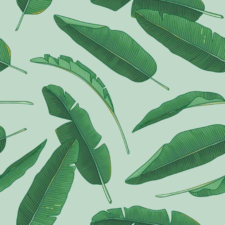 ilustracion: Hojas de plátano patrón Vectores