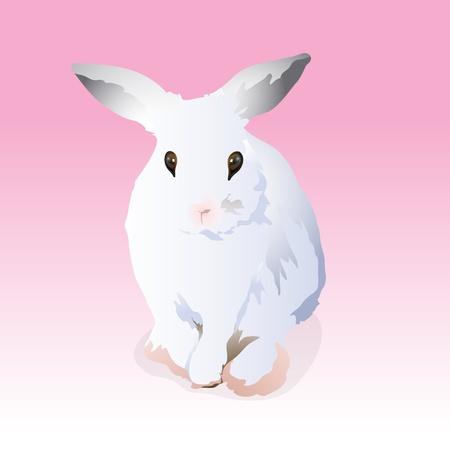 wit konijn: een wit konijn Stock Illustratie