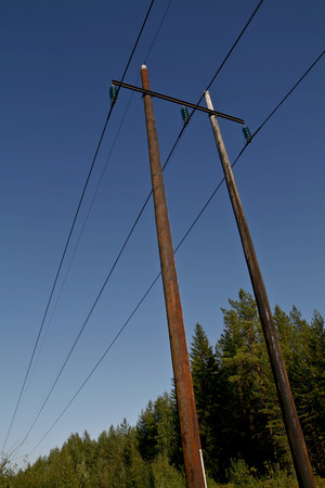 mains: electric power lines on wooden poles in a rural scenery