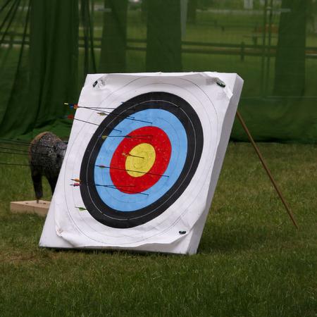 tiro al blanco de tiro con arco de flechas Foto de archivo - 1470731