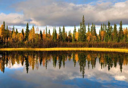 スウェーデンの北の農村のスカンジナビアの風景