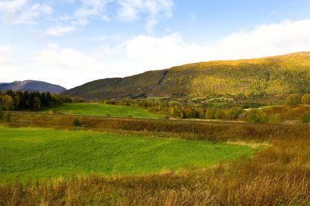 singeltreff i trondheim norweigian