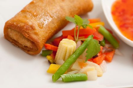 an asian spring roll and fresh vegetables photo