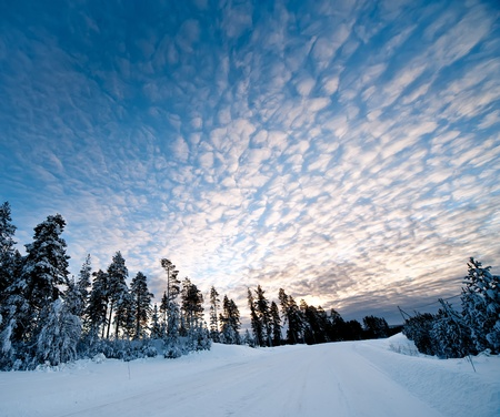sweden: a winter scenery in the north of sweden
