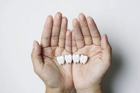 Isolated Good Teeth Model Hold on Hand, Take Care Your Teeth Healthy