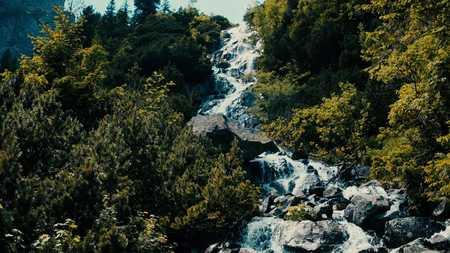 森の中、岩の滝の泡沫水を急いでください。