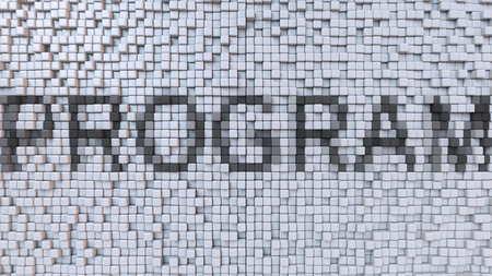 PROGRAM caption made of pixels, 3D rendering