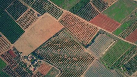 Aerial top down view of colorful fields, greenhouses and orchards pattern in Spain