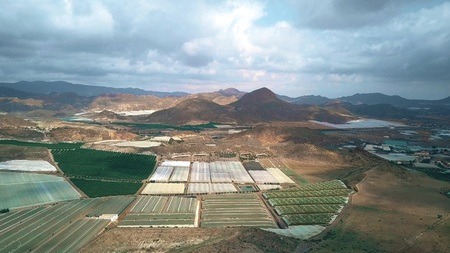 Aerial view of greenhouse farms and fruit orchards in Andalusia, Spain 스톡 콘텐츠