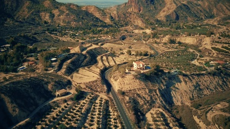 Aerial view of rural road and orchards in Spain