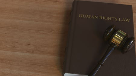 Court gavel on HUMAN RIGHTS LAW book. Conceptual 3D rendering