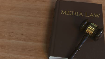 MEDIA LAW book and court gavel. 3D rendering