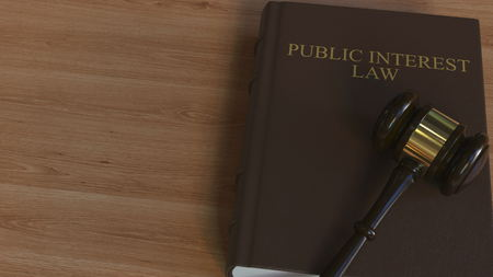 PUBLIC INTEREST LAW book and court gavel. 3D rendering Imagens