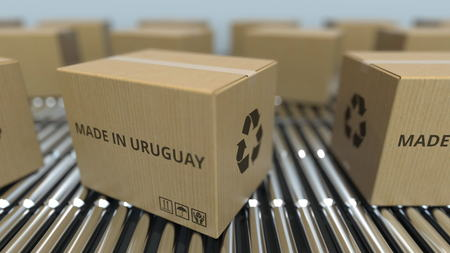 Boxes with MADE IN URUGUAY text on roller conveyor. Uruguayan goods related 3D rendering