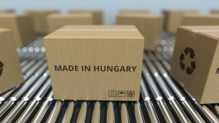 Boxes with MADE IN HUNGARY text on roller conveyor. Hungarian goods related 3D rendering