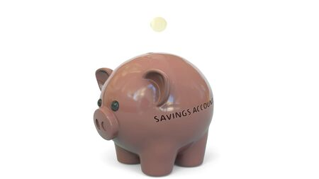 Money fall into piggy bank with SAVINGS ACCOUNT text. Savings related 3D rendering